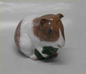 kaniner til salg i danmark